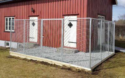 Hvorfor bygge hundegård?